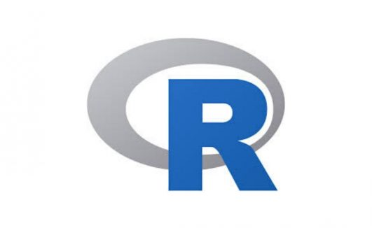 Programming in R Courses
